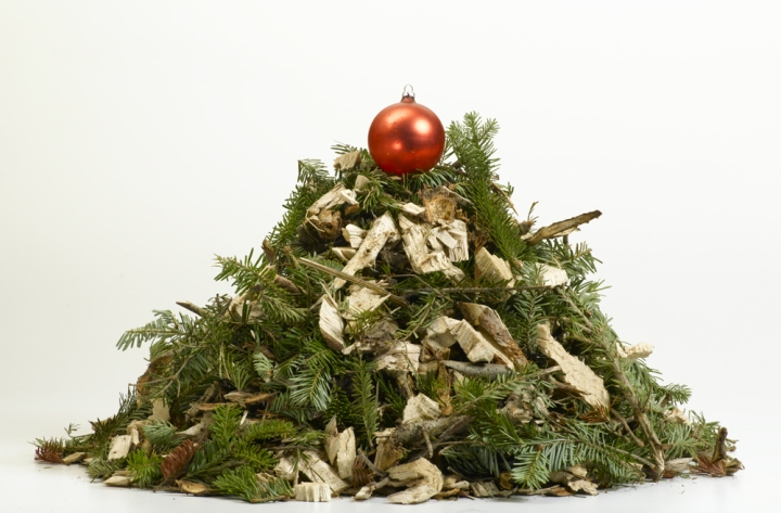 Christmas trees make great mulch!Photograph by Rebecca Hale, National Geographic
