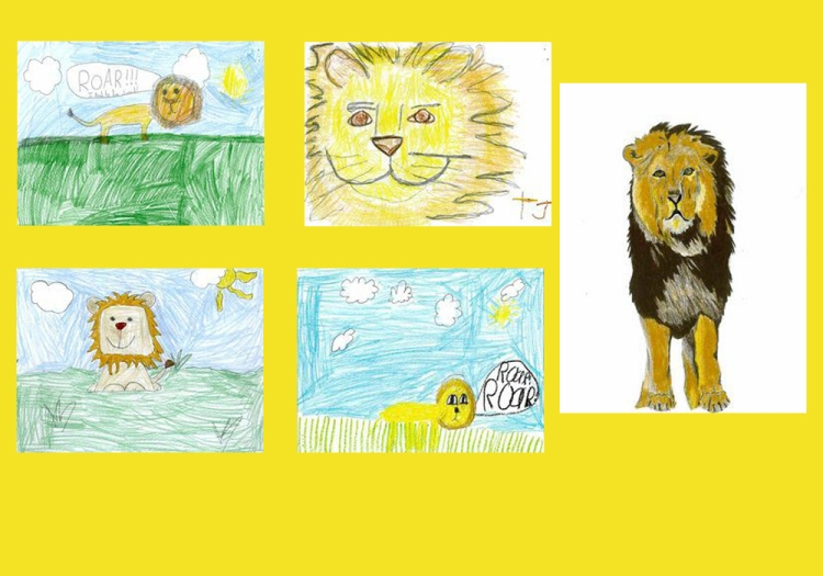 letters to lions
