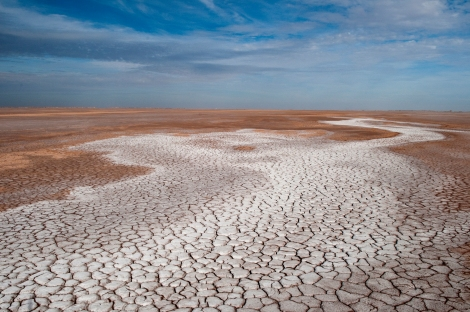 A dry, salty, cracked CO River river channel runs through its delta. Photograph Peter McBride
