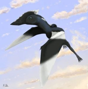 Vectidraco daisymorrisae was about the size of a modern-day crow.Illustration courtesy University of Southampton