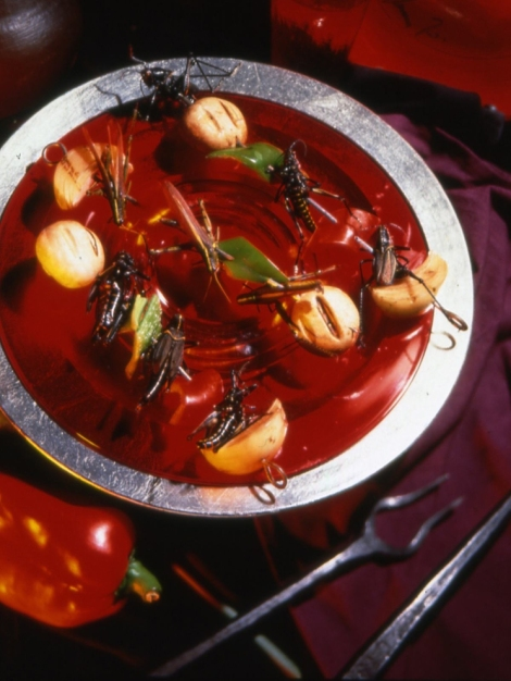 "Ingredients in this dish, ""Sheesh!Kabobs,"" include locusts or katydids, which are marinated overnight in a tomato-based sauce before being grilled. Photograph by Scott Stenjem, courtesy David George Gordon"