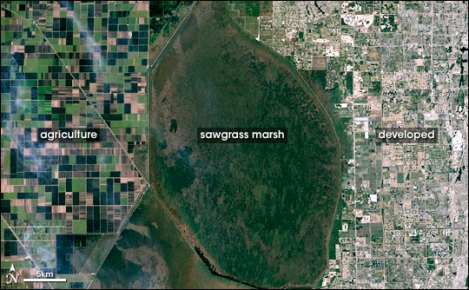 Southern Florida is a perfect case study of cropland, undeveloped, and developed land. I wish I had a higher-resolution of this fantastic image from the good folks at NASA. NASA image by Robert Simmon, based on Landsat 7 data provided by the UMD Global Land Cover Facility
