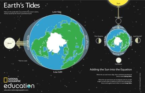 Tides_Poster_Final