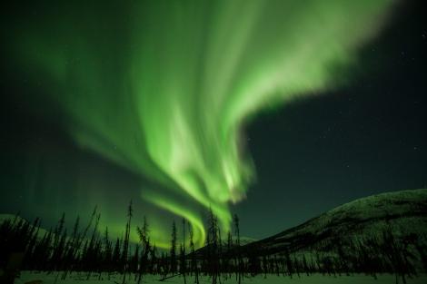 The Northern Lights (aurora borealis) streak the skies above Alaska's taiga. Photograph by Mark Thiessen, National Geographic