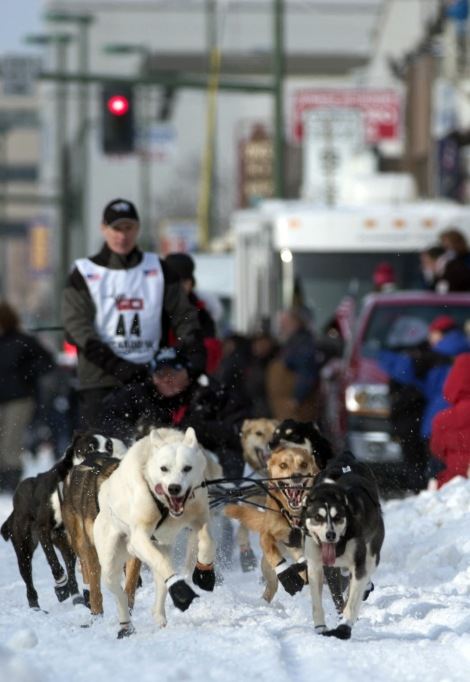 U.S. Air Force Maj. Thomas Knolmayer, a doctor, 3rd Medical Group Chief of Surgery, and his 16-dog team take off from the ceremonial starting line at the 2006 Iditarod Sled Dog Race in downtown Anchorage, Alaska, March 4, 2006.  Photograph by Tech. Sgt. Keith Brown, courtesy U.S. Air Force