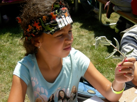 A student practices classifying plant species during a BioBlitz. Photograph by Patricia Norris.
