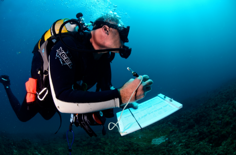 Alan Friedlander conducting scientific surveys while diving on the National Geographic Pristine Seas Mozambique expedition. Photo by Dave McAloney.