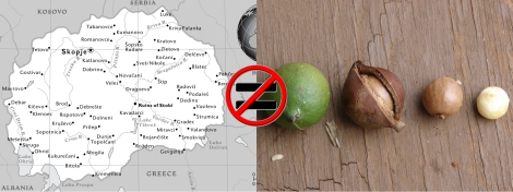Macedonia is not a macadamia.