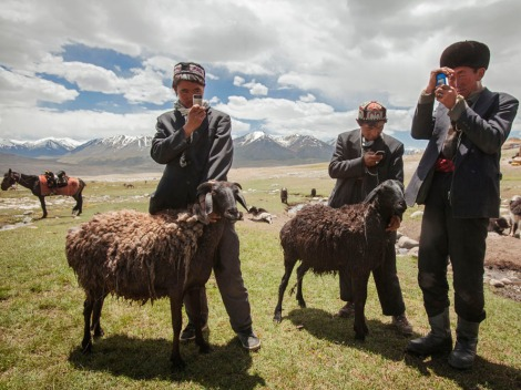 These herders in Afghanistan's Wakhan Corridor use cell phones to record data about their goats. Photograph by Matthieu Paley, National Geographic