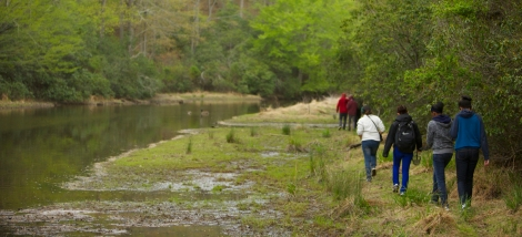 Students explore Prince William Forest Park, VA.