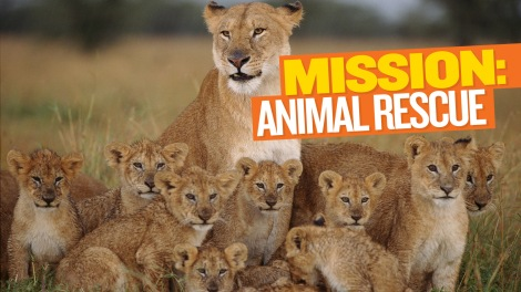 Mission: Animal Rescue