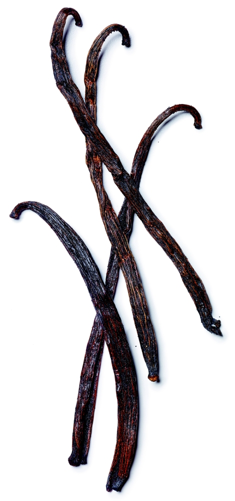 Vanilla pods are tattooed with pins as they're growing, to brand the valuable crop! Photograph by Rebecca Hale, National Geographic