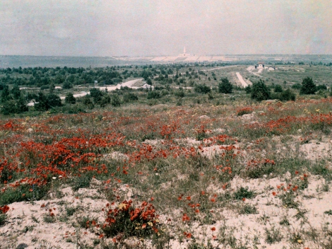 """The Battle of Verdun, in northeastern France, was the longest sustained conflict of World War I. The battle, which lasted 300 days and cost more than 300,000 French and German lives in 1916, was also one of the bloodiest of """"The Great War."""" The landscape around Verdun was still devastated more than 10 years after the battle, when this photo was taken. Read more about the lingering environmental impact of World War I here. Photograph by Jules Gervais Courtellemont, National Geographic"""