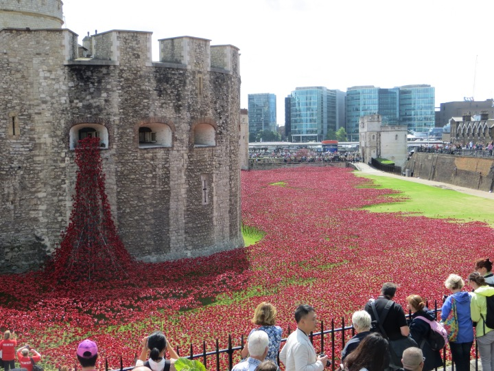 "Ceramic poppies spill from the ""Weeping Window"" at the Tower of London. Photograph by Caryl-Sue, National Geographic"