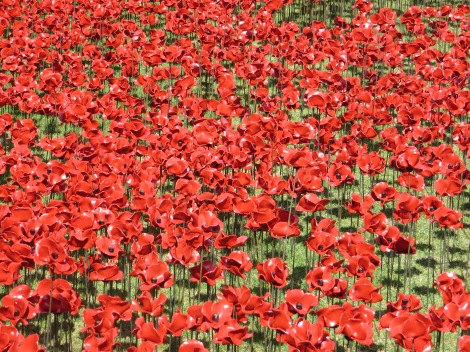 Read more about Blood Swept Lands and Seas of Red here. Parts of the exhibit will remain at the Tower of London through the end of November. Photograph by Caryl-Sue, National Geographic
