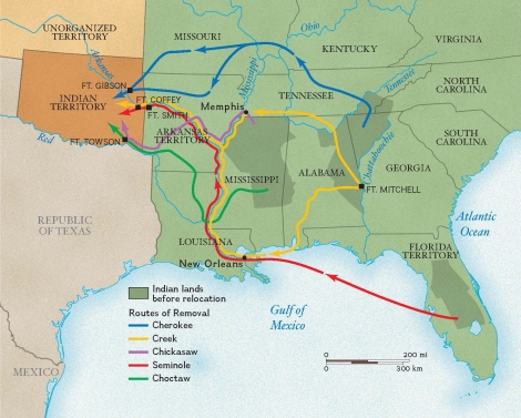 The map shows the routes of the five southeastern tribes that were forced to leave their homelands in the Southeast and live in Indian Territory in what is now Oklahoma. A surprising number of Americans opposed Indian removal. (The first bill in Congress passed by only 103 votes to 97.) But the demand for new lands was high, and former Army officers such as Andrew Jackson used their experiences as Indian fighters to gain political popularity and get elected to office. Map by National Geographic Society
