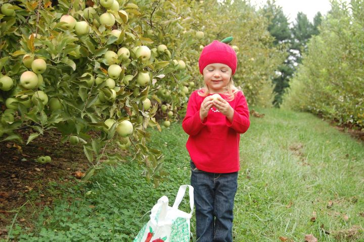 At Butler's, we still see the need to increase the public's awareness of where their food is coming from and how to make healthy choices—like finding the perfect apple! Photograph courtesy Jillian Levine