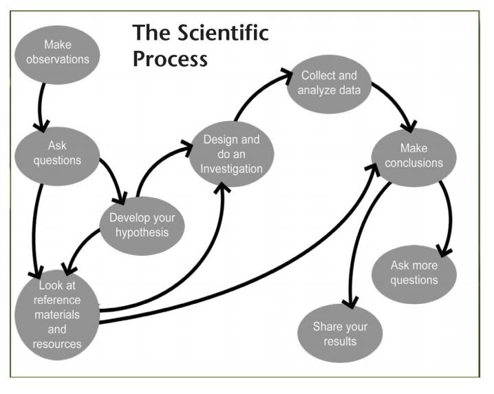 1scientific method