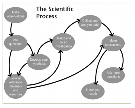 1scientific method