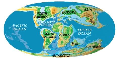 Map courtesy of CR Scotese, PALEOMAP Project