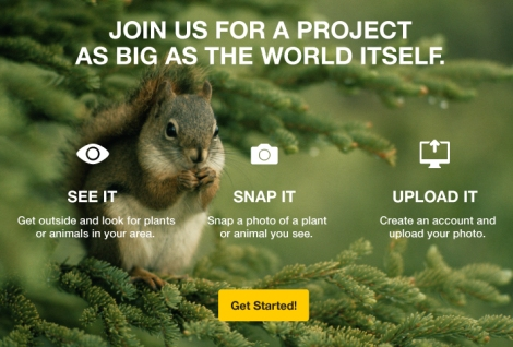 National Geographic Great Nature Project