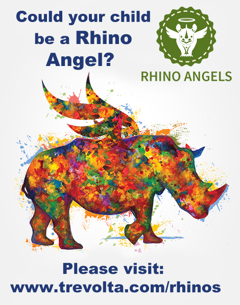 rhino_angel_graphic