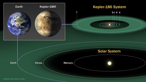 Kepler 186f was the first Earth-sized planet orbiting a star in a habitable zone. Kepler 186f is part of a five-planet system orbiting a dwarf star about half the size and mass of the sun. (Earth is part of an eight-planet system orbiting a star exactly the size and mass of the sun.) Learn more about Kepler 186f here. Illustration courtesy NASA Ames/SETI Institute/JPL-Caltech