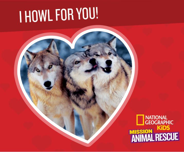 Mission: Animal Rescue Wolf Valentine