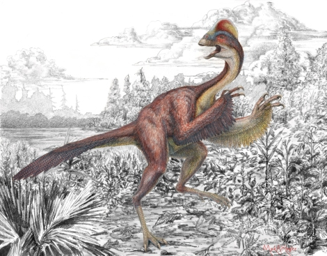 """Anzu wyliei, the """"chicken from Hell,"""" explores its 66 million-year-old North American environment in this terrific illustration. Illustration by Mark A. Klingler, Carnegie Museum of Natural History"""