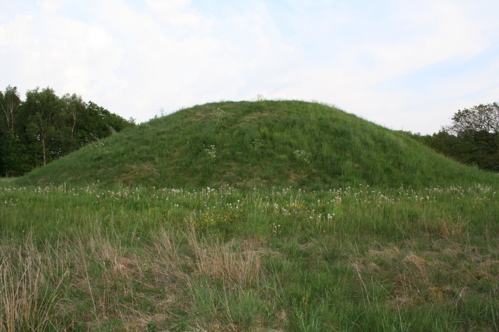 The Egtved Girl was carefully buried in a barrow, or burial mound, like this one in Egtved, Denmark. Photograph by Einsamer Schütze, courtesy Wikimedia. CC BY SA 3.0
