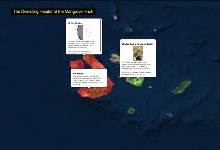 mangrovefinchmap