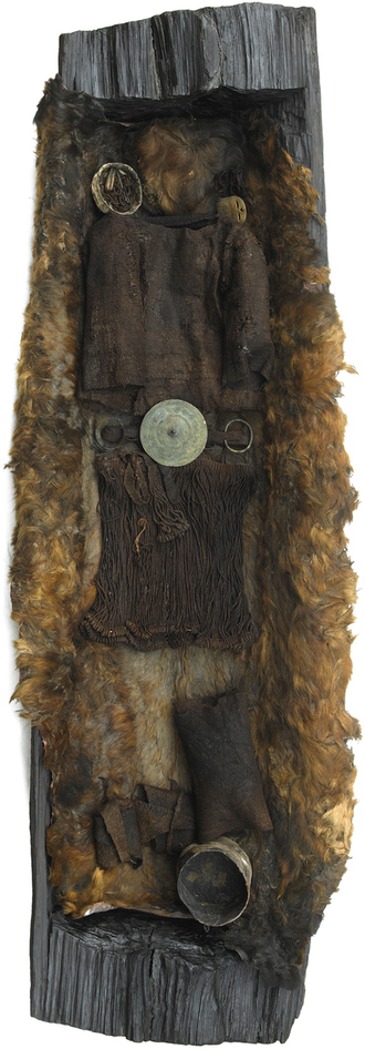 The Egtved Girl was buried in a coffin—the carefully hollowed-out trunk of a large oak tree. She was covered with a woolen blanket and lying on a cowhide sheet. A yarrow flower was placed on the coffin at the time of its burial—revealing that the Egtved Girl was buried in summertime. An analysis of the coffin using dendrochronology (study of tree rings) was used to date the remains. Only the girl's hair, brain, teeth, nails and little skin were preserved. The cremated remains of a 5- or 6-year-old child were also buried with Egtved Girl. Given Egtved Girl's age, the child was almost certainly not her's. Photograph by Roberto Fortuna, with kind permission of the National Museum of Denmark