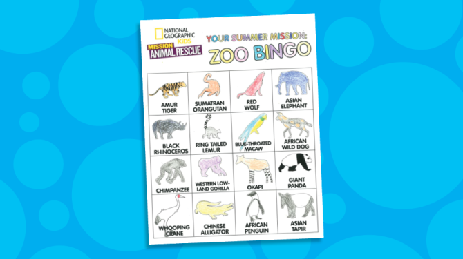 MAR bingo promo-2