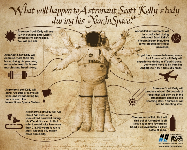 Does this look familiar? The brainiac illustrators at NASA give us an updated (and more anatomically correct!) version of Leonardo da Vinci's Vitruvian Man. Illustration by NASA