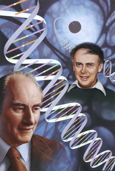 "British scientist Francis Crick, left, and his American colleague James Watson revolutionized the field of genetics when they discovered the double-helix structure of deoxyribonucleic acid (DNA), the genetic blueprint for all living organisms. And then Watson distinguished himself by saying things like ""some anti-Semitism is justified"" and ""our social policies are based on the fact that [Africans'] intelligence is the same as ours—whereas all the testing says not really."" Watson auctioned his Nobel Prize for $4.1 million. Illustration by Ned M. Seidler, National Geographic"