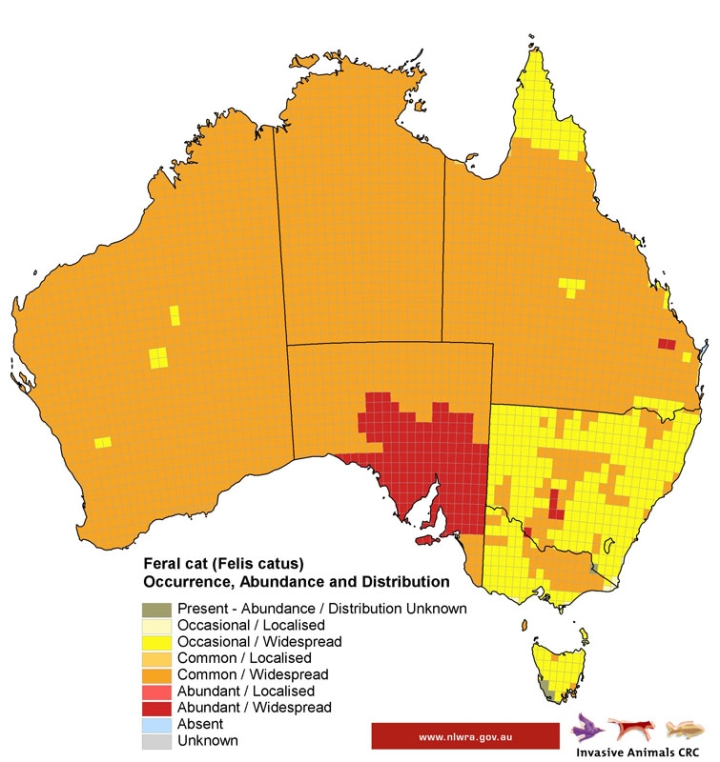 We wouldn't be National Geographic if we didn't have a map, would we? Use MapMaker Interactive to compare the population density of Australia's feral cats with the population density of Australia's humans. See any correlations? Map courtesy National Land and Water Resources, Australia