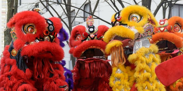 Lion dances are a go-to symbol of Chinese New Year. In a lion dance, two dancers in a gorgeously stylized costume work together to mimic the movements of a wild lion. This pride is congregating in the savannas of Paris, France. Photograph by Myrabella, courtesy Wikimedia. CC BY SA 4.0