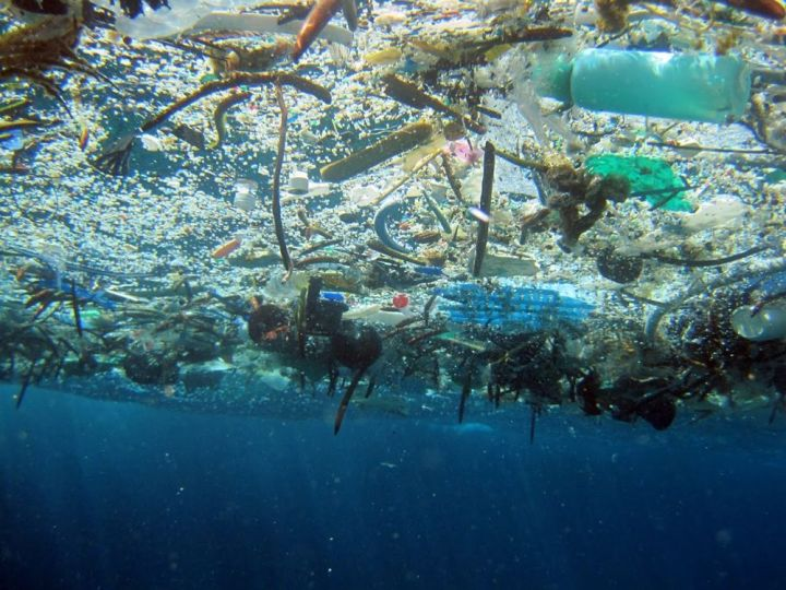 The Great Pacific Garbage Patch is a collection of marine debris in the North Pacific Ocean. Photograph by NOAA