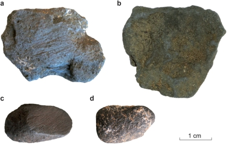 """Manganese dioxide is abundant in the limestone cliffs of Dordogne. These examples from Pech-de-l'Azé I contrast unmodified blocs (b,d) with those featuring abrasion marks (a,c). Photograph from """"Selection and Use of Manganese Dioxide by Neanderthals,"""" Scientific Reports 6, Article number: 22159 (2016)"""