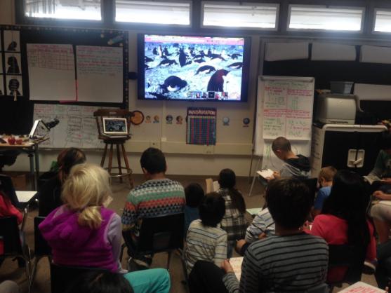 penguin-classroom-grabowski