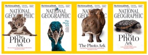 photo ark covers.png