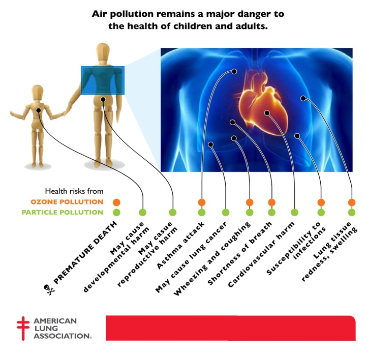 Illustration by the American Lung Association