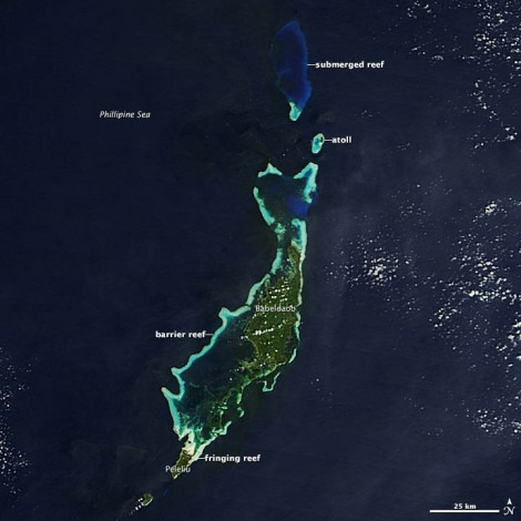 Babeldaob, the largest island in Palau, has all three major types of coral reefs: atolls, barrier reefs, and fringing reefs. NASA image courtesy Jeff Schmaltz, LANCE MODIS Rapid Response