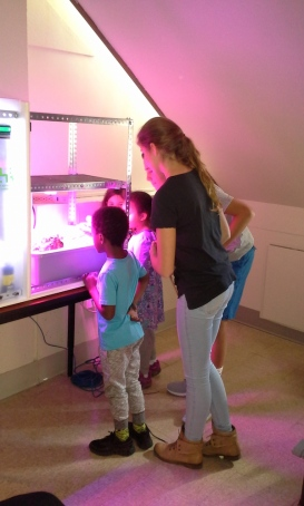 Students were fascinated by the food computer. Photo by Chris Randall, director of communications at Shady Hill School