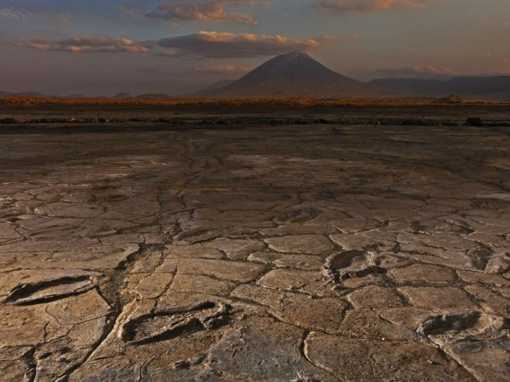These footprints were left by our bipedal hominin ancestors in what is now Tanzania more than three million years ago. Photograph by Robert Clark, National Geographic
