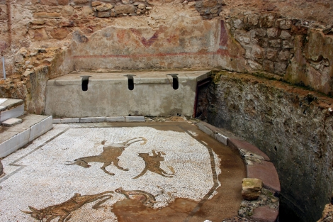 Just as today, toilets in ancient Roman sports arenas were not the fanciest facilities. This incredible restroom, complete with mosaic floor, is an indication of the ancient Roman 1%. It was part of a luxurious agricultural estate on the island of Sicily. Photograph by José Luiz Bernardes Ribeiro, courtesy Wikimedia. CC-BY-SA-4.0