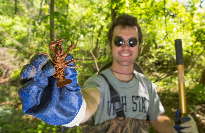 Bryan Chasney, of the Anacostia Watershed Society, found this red swamp crawfish during a biological inventory at the Gateways, a national park property on the Anacostia River. Photograph by Krista Schlyer, National Geographic
