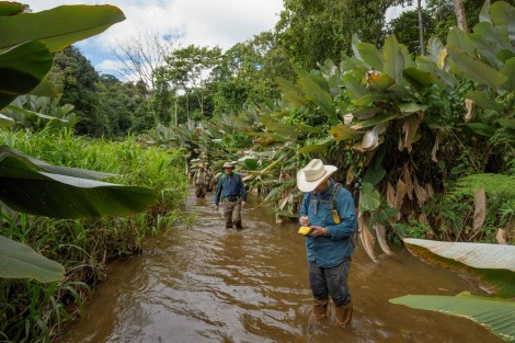 These guys aren't lost—they're using GPS to help locate an archaeological site in the Honduran jungle. Photogrpah by Dave Yoder, National Geographic
