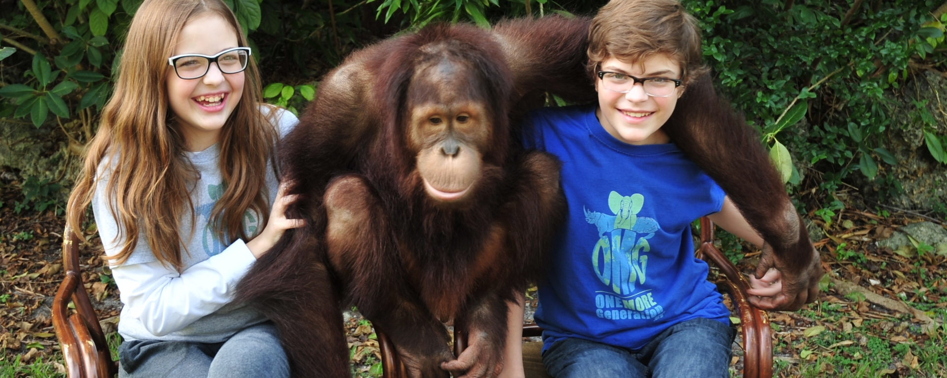 Orangutan Letter Writing Campaign – National Geographic