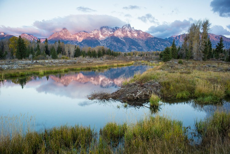 Grand Teton National Park in Wyoming is one of the many wilderness areas protected by the 1964 Wilderness Act. Photograph by Charlie Hamilton James, National Geographic